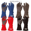 Gloves F1 Style